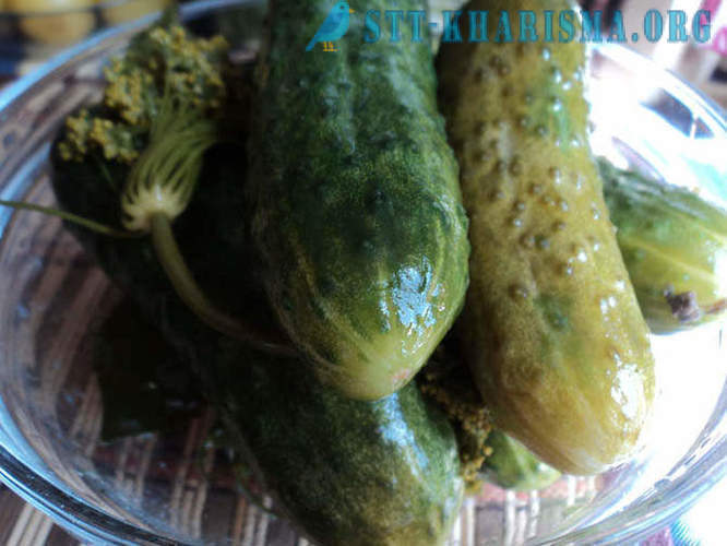 Recipes on weekends - salted cucumbers